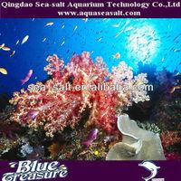 Reef Salt: 150 Gallon Aquarium System