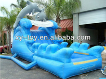 Backyard 18ft dolphin wet slide