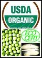 ecocert orgánica de proteína de guisante polvo