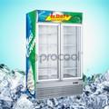 Procool commerciaux. porte en verre congélateur pour crème glacée