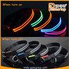 2015 Hot Super bright double-line LED TZ-PET5000 Flashing Led dog Collar