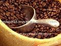 녹색 커피 콩