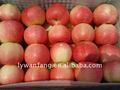 Roja fresca saludable de Apple