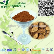 Achyranthes Bidentata Extract Powder(Plant Extract,Achyranthan 20%)