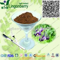 Belladonna Extract Powder(Hyoscyamine0.7%-0.8%)
