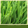 2014 hot sale UV-resistance artificial turf price for football fields
