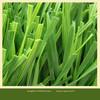Anti-UV artificial turf price green artificial turf grass