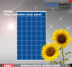 Cheap price, good quality, 250W photovoltaic cell