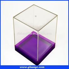Custom Transparent clear acrylic display case,small acrylic storage box