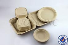 Disposable Bamboo Food Tray