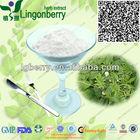 Natural Oleanolic Acid Extract / Olea Europaea Extract oleanolic acid powder