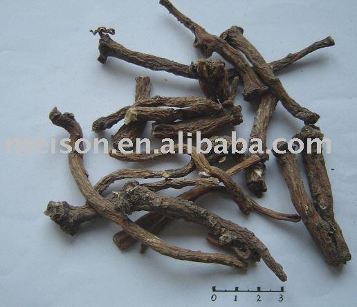 Diente de león de la raíz ( pugongying )