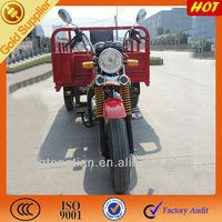 China Motorized Three/3 Wheel Bikes