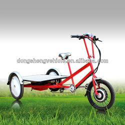 DS-04 Electric Flatbed Trike (48V)