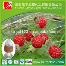 raspberry ketone extract 4% 10:1
