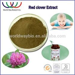 natural estrogen Red clover p.e. isoflavones,HACCP KOSHER FDA 8%-40% HPLC red clover extract