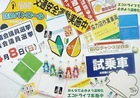 Fridge magnet sheet , standard and custom , made by Japan