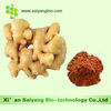 Professional Manufacturer Low Price Ginger Extract 1%~5%