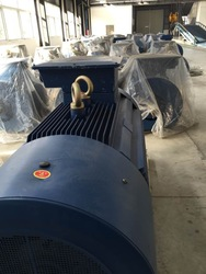 Y2 series Three Phase Asynchronous Induction Electric Motor