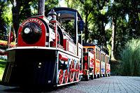 Electric Mini Train Fun Express