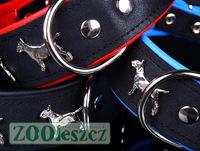 Leather Collar Bull Terrier, Halsband