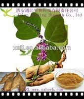 98% Natural Puerarine from radix puerariae lobatae