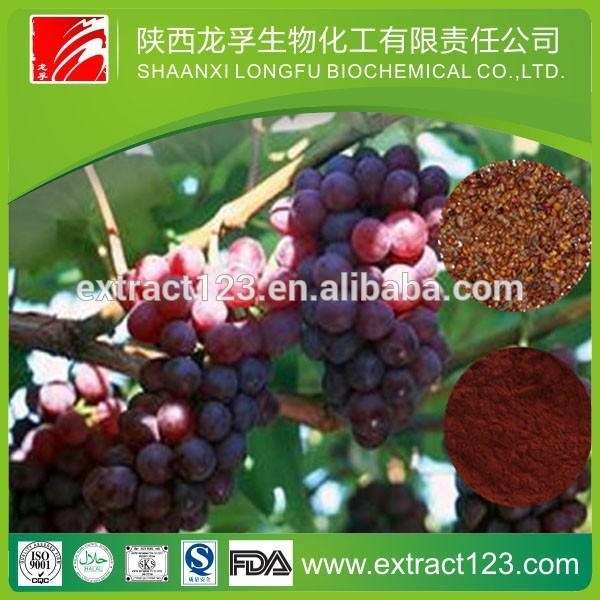High quality low price grape seed extract softgel