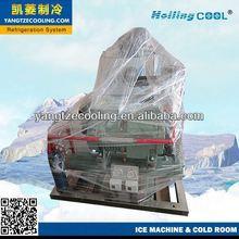 Frozen fish need flake ice machine for cruise ship,ice flake machine