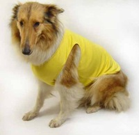 2013 fashion dog costume,hot sale dog clothes wholesale dog clothes and accessories
