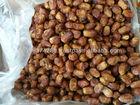 Zahidi Dates (semi-dry)