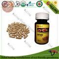ganoderma orgânica comprimidos