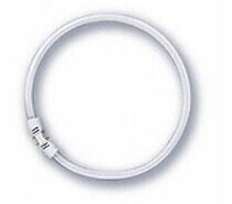 T5 LED RING LIGHT 12W China Supplier