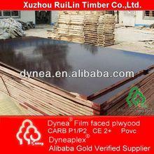 Dynea wooden single door