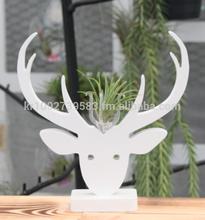 """Air Plant Tillandsia Terrarium Kit """" White Deco Art Collection"""" Deer"""