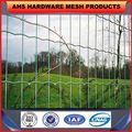 Ahs-01-2453 ISO9001 AHS usine de haute qualité accordéon barbelé escrime fil