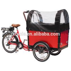 Brushless Electric Cargo Trike/family Cargo Bike