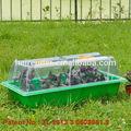 gardenhouse propagador