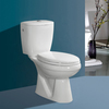 Top-selling sanitary ware hidden camera toilet for bathroom