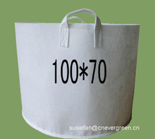 Tree root control bag
