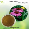 high quality echinacea purpurea extract in bulk with best price