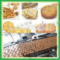multifuncional automática açoinoxidável biscuit biscuit máquina