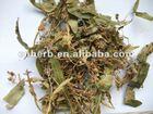 dried Linden leaf-flower
