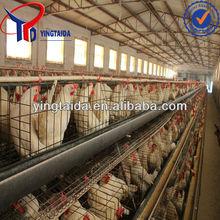 pollo gabbia e strato gabbia di pollo e netto