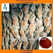 High quality Pinus massoniana Lamb extract,plant extract pine bark extract powder