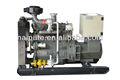 30kw gas natural generador de la turbina con calidad confiable