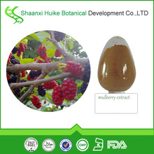 High Quality 100% Pure Mulberry Extract powder