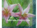Colorful flower design decorativo impresso guardanapos de tecido partido papel trazer a sua vida colorida
