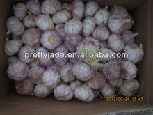 red garlic ( 2014 new crop )
