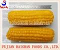 340g de vacío paquete de maíz dulce en conserva