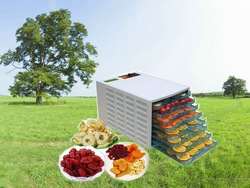 trays food dehydrator